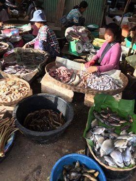 <カンボジアの市場>