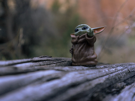 What's Next for Baby Yoda?