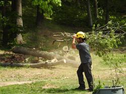 770-BAM-TREE, INC.