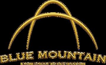 BM_20th_Anniversary_logo_medium.png