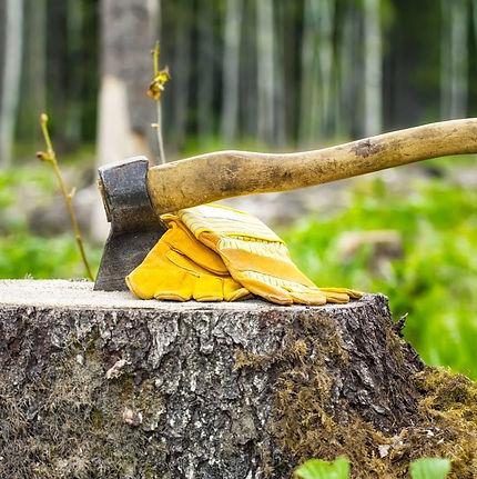 Cumming Tree Service