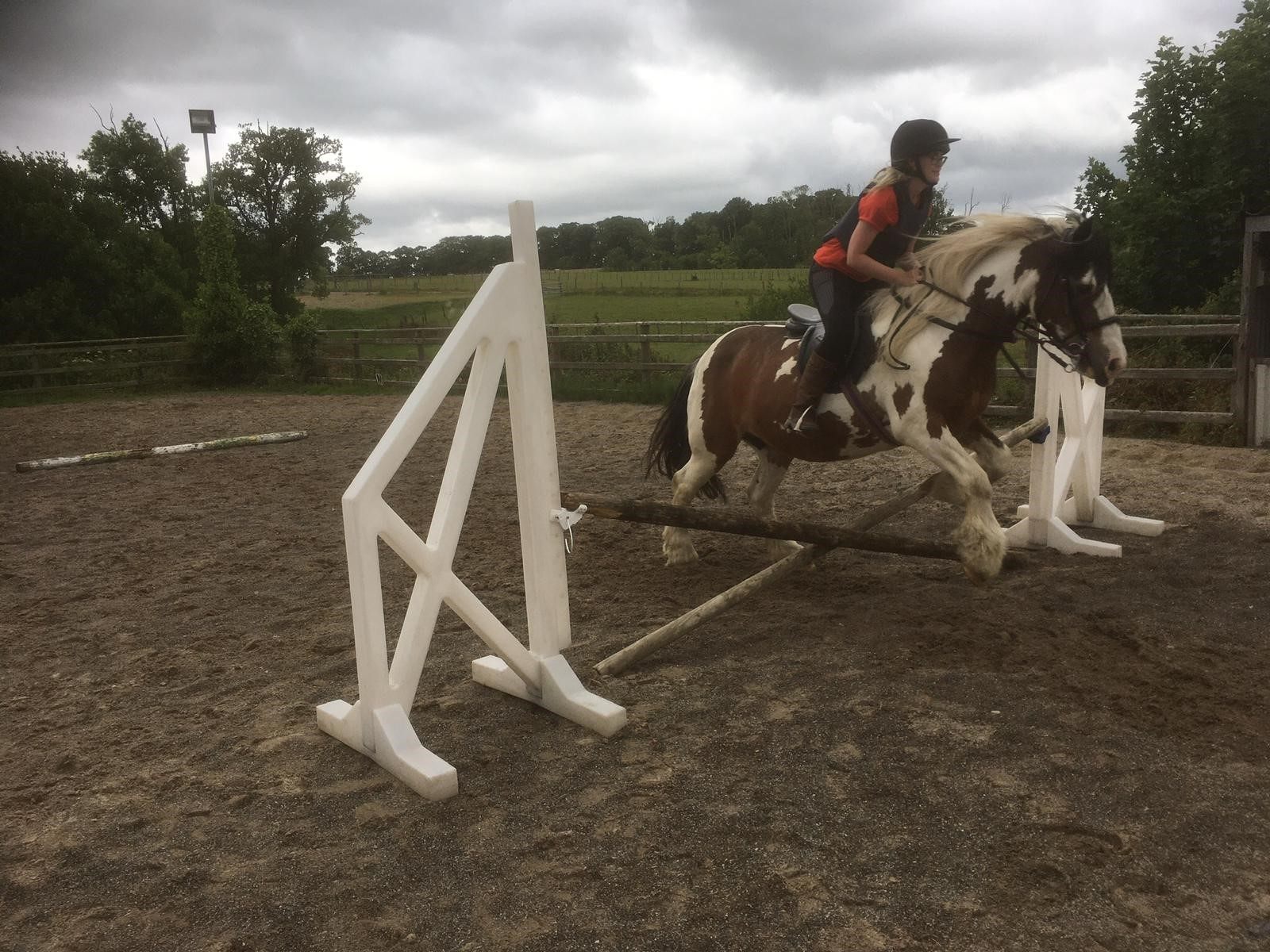 Llannerch pony jumping