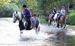 Llannerch River Ride 1 Aug 2019 (67)