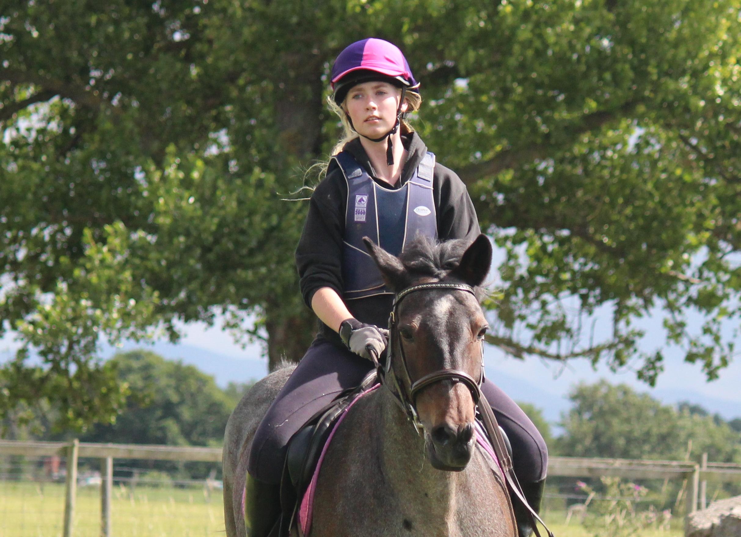 Llannerch Pony Camp
