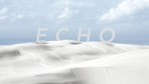 ECHO - Lieke Bezemer 2020