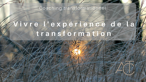ACT in, formation coachng, école coaching, coaching transformationnel