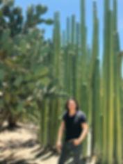 cactus retrato.jpg
