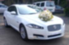 Wedding Cars in Varkala, Luxury Cars for Rent in Varkala, wedding car rental Varkala, premium cars for rent in Varkala, luxury cars for wedding in Varkala