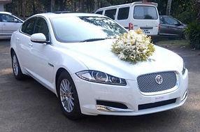 Wedding Cars in Kayamkulam ,Wedding Car Rental in Kayamkulam ,Rent a car in Kayamkulam , Kayamkulam  wedding cars,luxury car rental Kayamkulam , wedding cars Kayamkulam ,wedding car hire Kayamkulam ,exotic car rental in Kayamkulam , TaxiCarKayamkulam ,wedding limosin Kayamkulam ,rent a posh car ,exotic car hire,car rent luxury