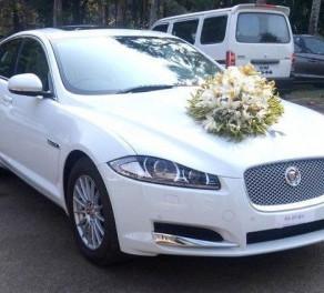Wedding Car Rental Vazhakulam   Wedding Cars in Vazhakulam
