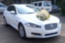 Wedding Cars in Kalady ,Wedding Car Rental in Kalady ,Rent a car in Kalady , Kalady  wedding cars,luxury car rental Kalady , wedding cars Kalady ,wedding car hire Kalady ,exotic car rental in Kalady , TaxiCarKalady ,wedding limosin Kalady ,rent a posh car ,exotic car hire,car rent luxury