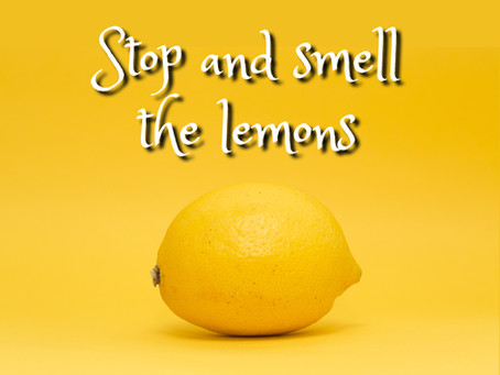 Stop and Smell the Lemons
