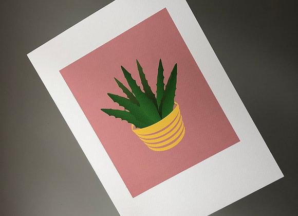 Aloe Vera on Pink A4 Art Print
