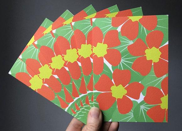 Notecard Set - Nasturtium (6 cards same design)