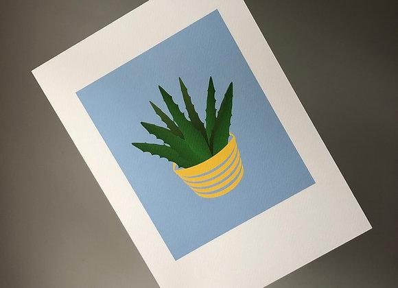 Aloe Vera on Blue A4 Art Print