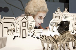 Zebra zebra_NTjong