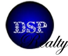 dsp realty logo2 copy.jpg