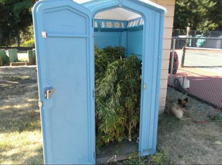 Man Finds Port-A-Potty Filled With Pot
