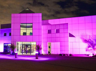 Public Tours Of Prince's Paisley Park To Begin This Fall