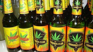 Another Major Beer Company Is Now Part of the Marijuana Craze