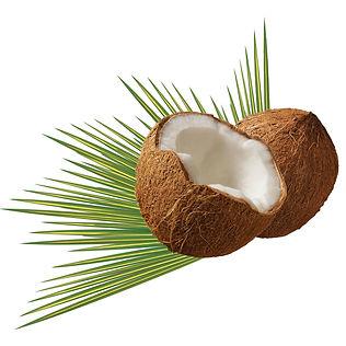 coconut-979858_1920.jpg