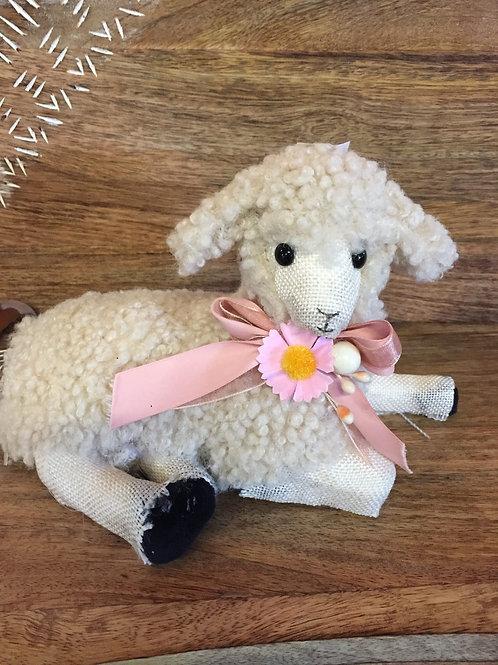 """Lamb """"laying"""""""