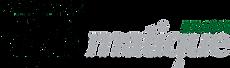 logo_0020aa90 (1).png