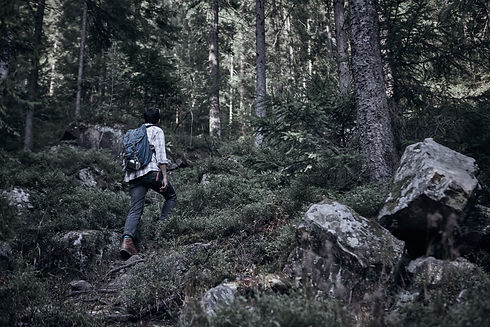 Man Hiking in Wilderness_edited.jpg