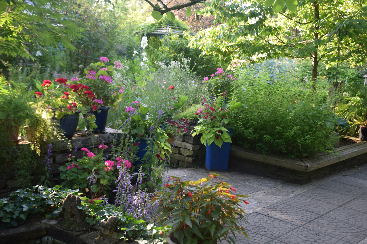 The house patio features many potted plants.