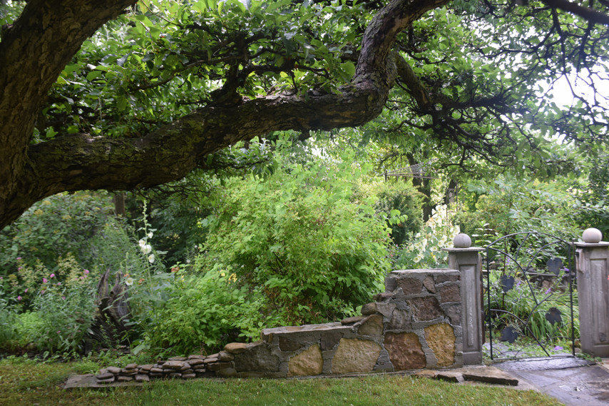 The gate to the gazebo.