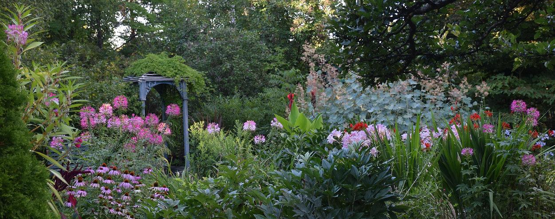 pink garden banner.jpeg