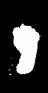 Generational_Footprint_Sm.png