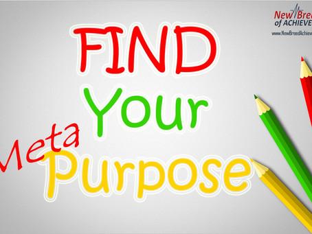 Find Your Meta Purpose Part 1