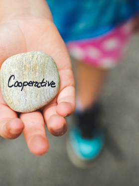 Cooperative Societies-All you need to know