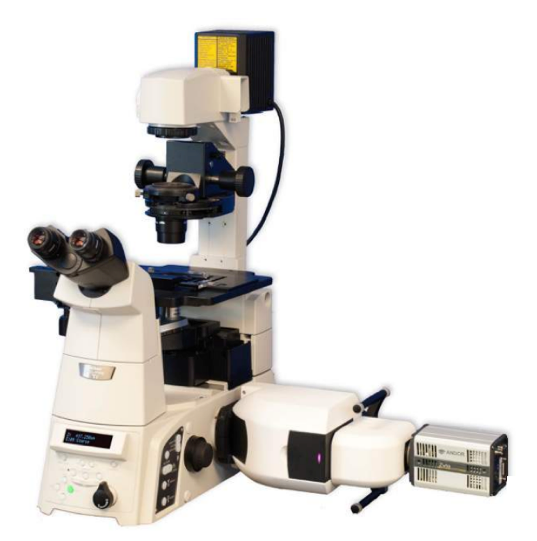 Confocal Inverted Microscope