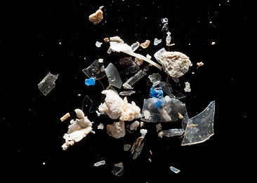 MICRO-PLASTICS - How Can We Help? | INFO IN IMAGES