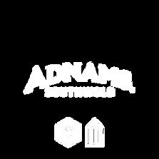 plain white logos-03.png