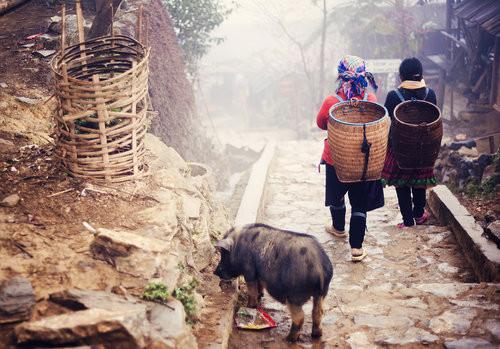 Hmong1.jpg
