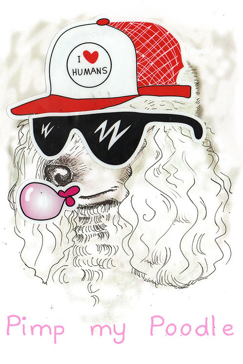'Pimp my Poodle' STICKER CARD