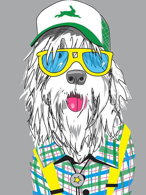 Bearded Collie Hipster Card