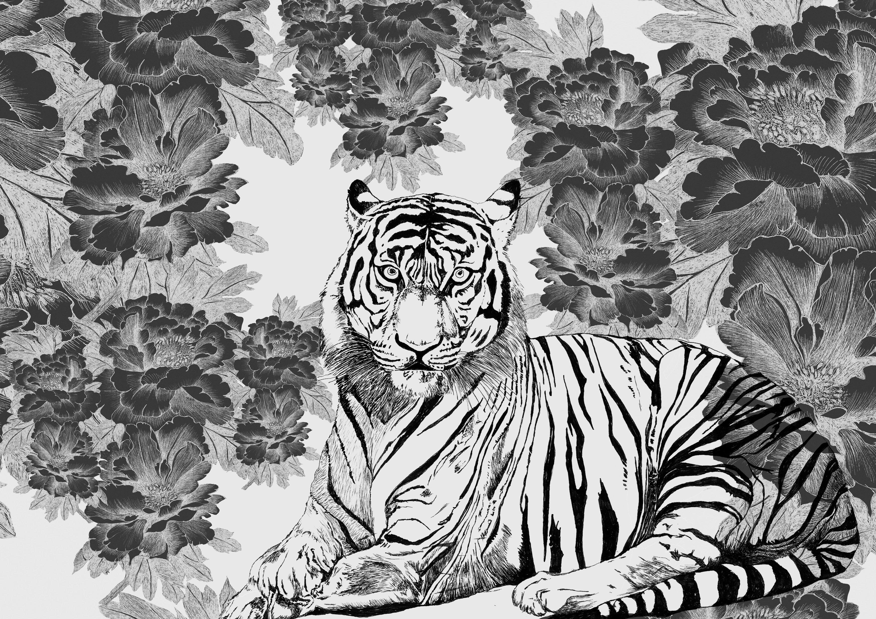 tigris nero franck auguste pitoiset tous