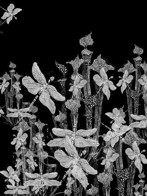 exultant lusibus folia