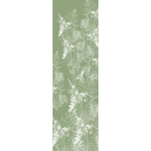 filicophytes viridis