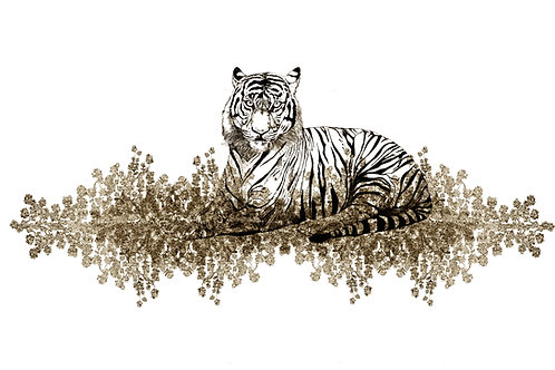 tigris  aureus