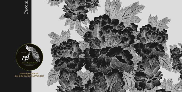 collection cabinet d'estampes paeonia lactiflora griseo  franck auguste PITOISET