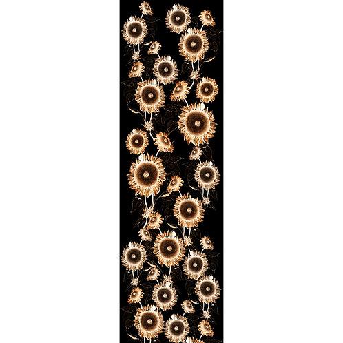 HELIANTHUS aurantiaco nero