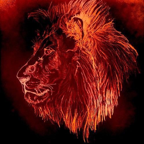 leo aurus