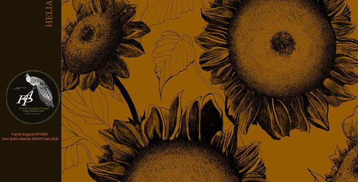 collection Florale heliantheus caramelus franck auguste PITOISET
