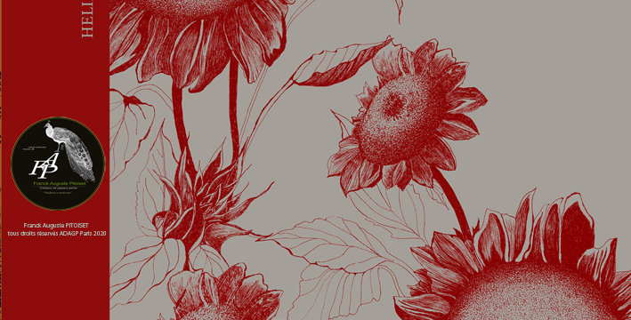 collection Florale heliantheus griseo franck auguste PITOISET