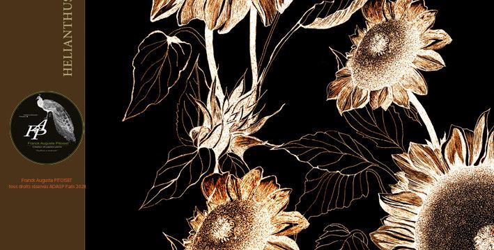 collection Florale heliantheusaurantiaco nero franck auguste PITOISET